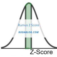 rumus z score